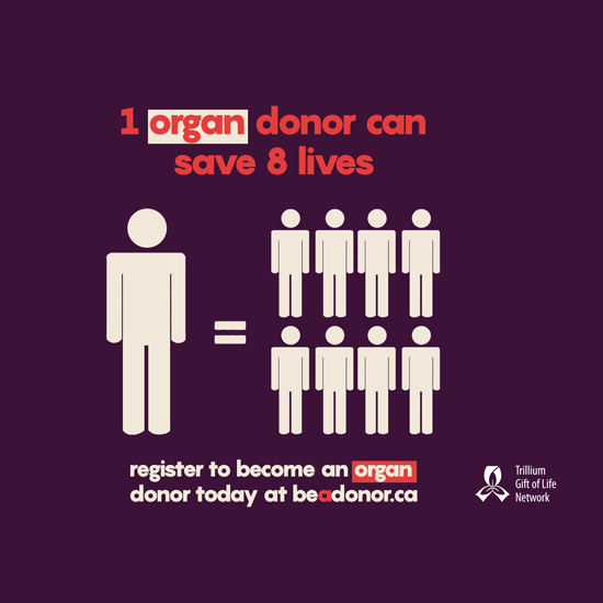 One organ donor can save eight lives