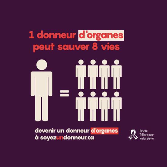 Un donneur d'organe peut sauver huit vies